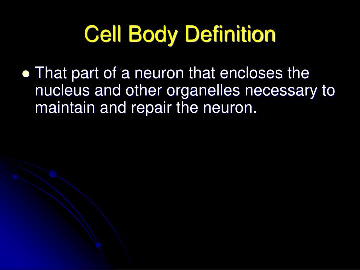 Cell Body Definition