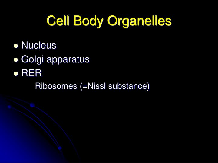 Cell Body Organelles
