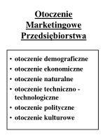 otoczenie marketingowe przedsi biorstwa