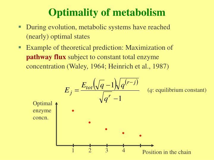 Optimality of metabolism