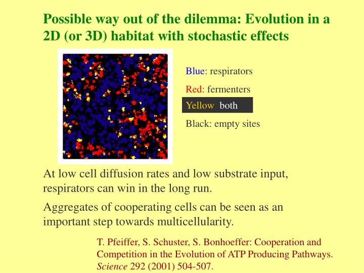 Possible way out of the dilemma: Evolution in a 2D (or 3D) habitat with stochastic effects