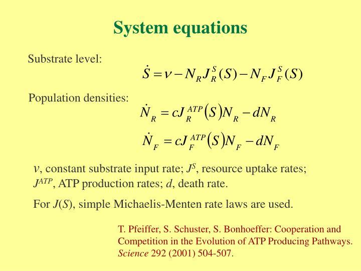 System equations