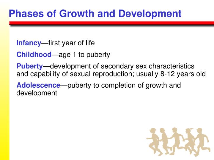Phases of Growth and Development