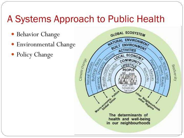 A Systems Approach to Public Health