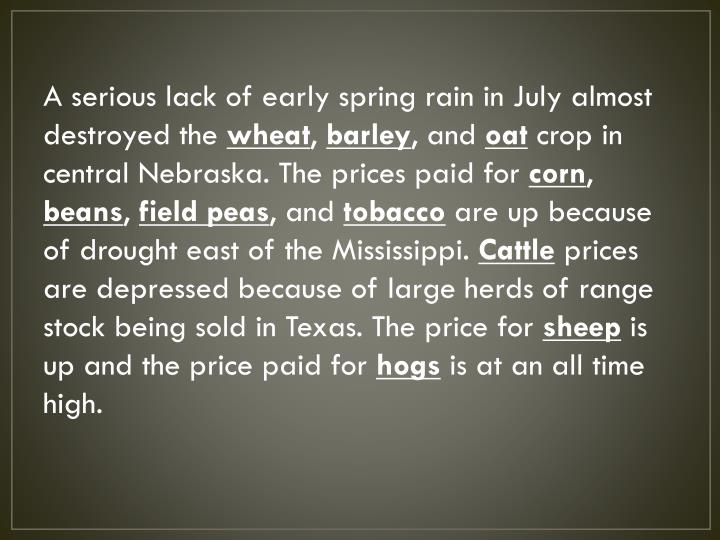 A serious lack of early spring rain in July almost destroyed the