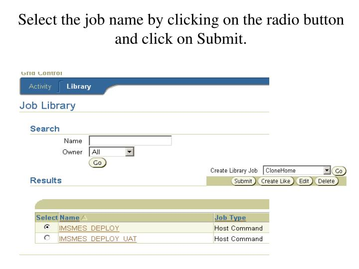 Select the job name by clicking on the radio button and click on Submit.