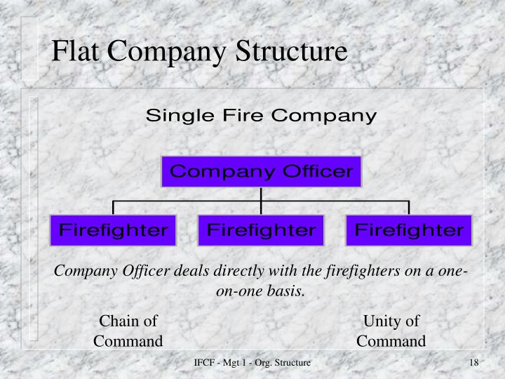 Flat Company Structure