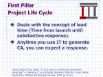 first pillar project life cycle