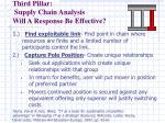third pillar supply chain analysis will a response be effective