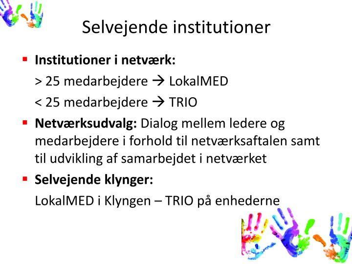 Selvejende institutioner