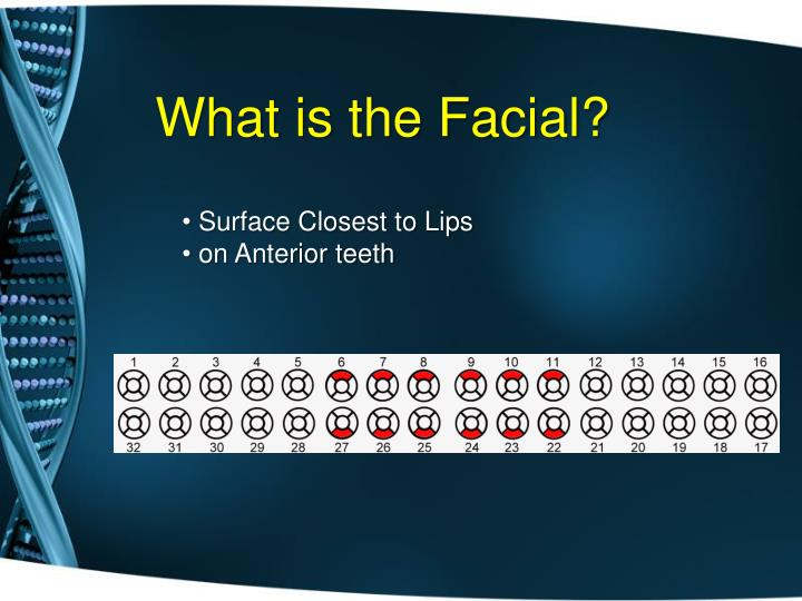 What is the Facial?