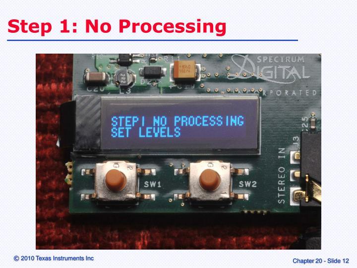 Step 1: No Processing