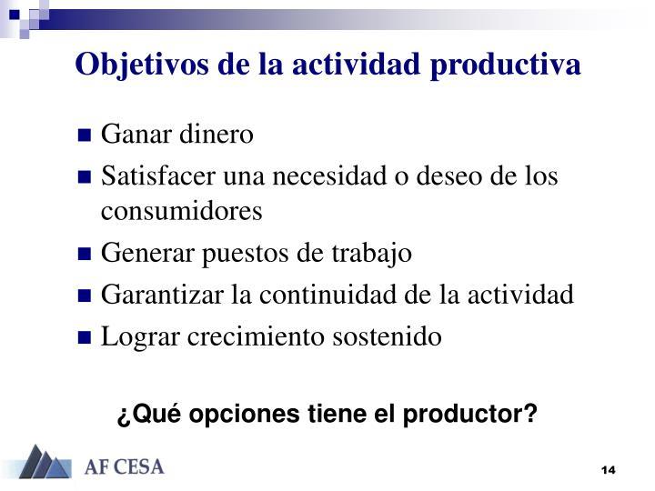Objetivos de la actividad productiva