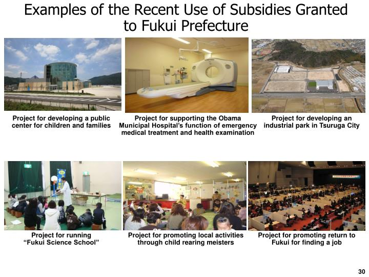 Examples of the Recent Use of Subsidies Granted to Fukui Prefecture