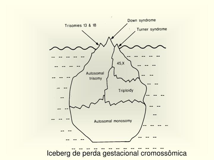 Iceberg de perda gestacional cromossômica