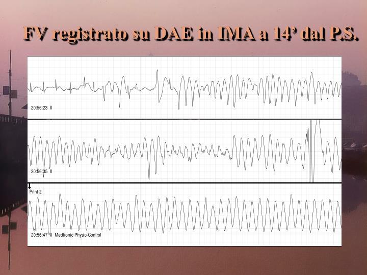 FV registrato su DAE in IMA a 14' dal P.S.