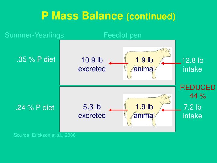 P Mass Balance