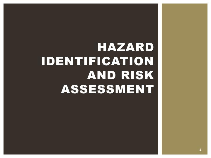 hazard identification and risk assessment n.