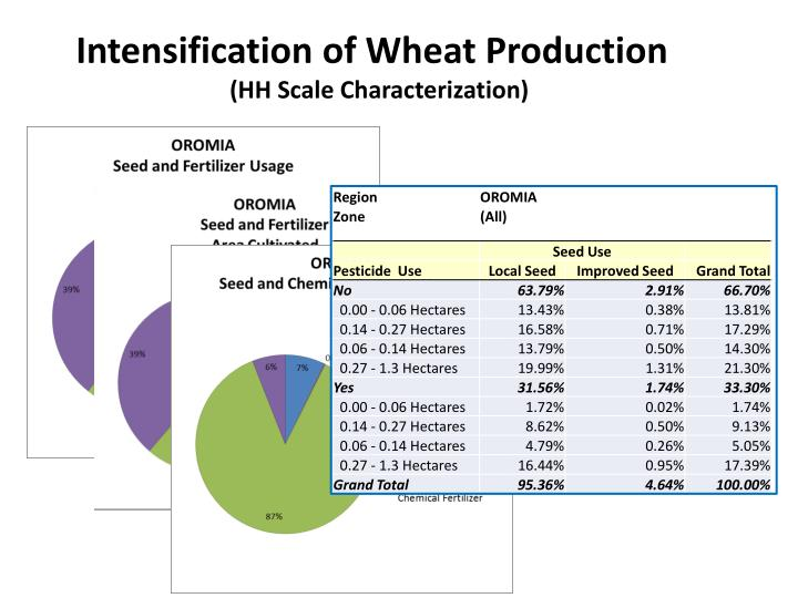Intensification of Wheat Production