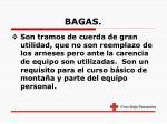 bagas