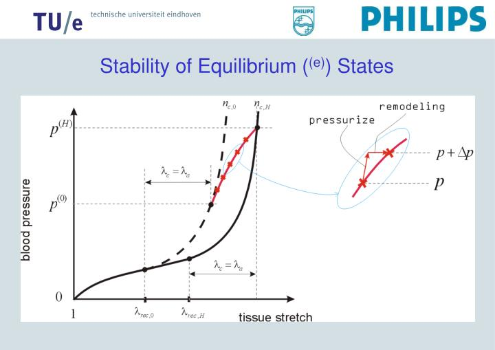 Stability of Equilibrium (