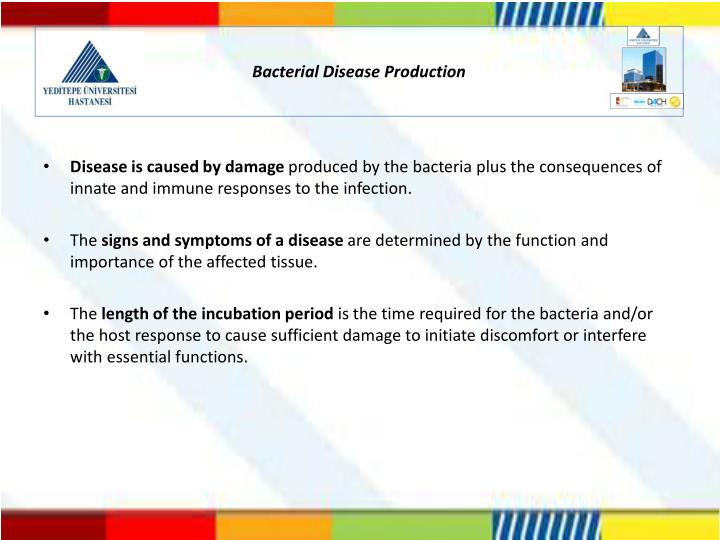 Bacterial Disease Production