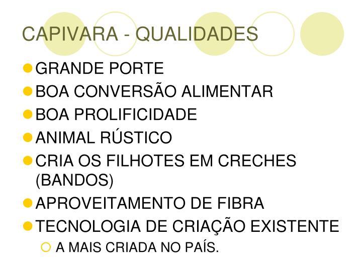 CAPIVARA - QUALIDADES