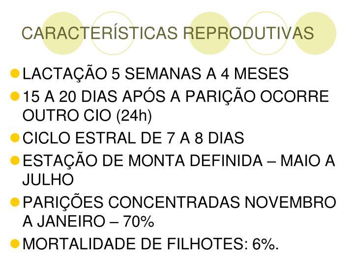 CARACTERÍSTICAS REPRODUTIVAS
