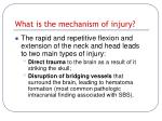 what is the mechanism of injury