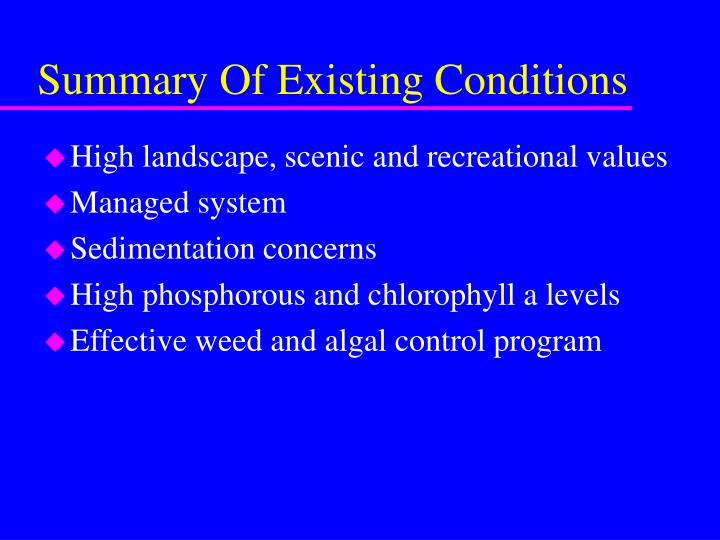 Summary Of Existing Conditions