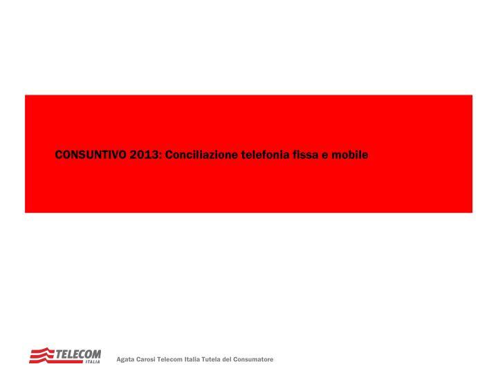 CONSUNTIVO 2013: Conciliazione telefonia fissa e mobile