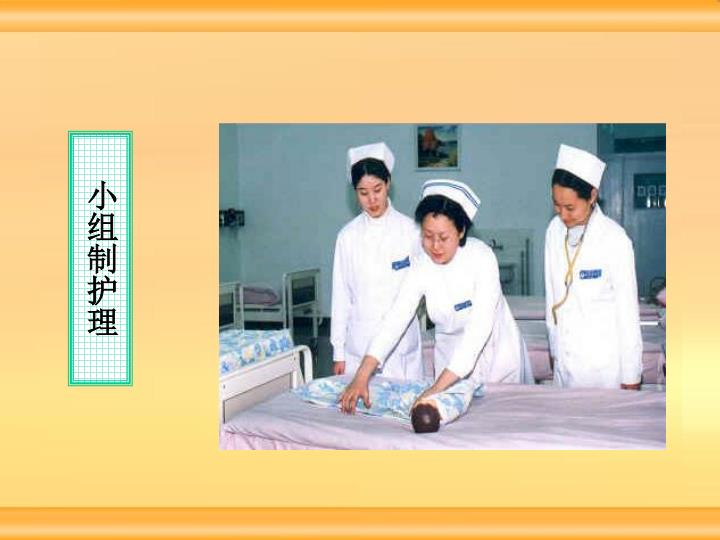 小组制护理