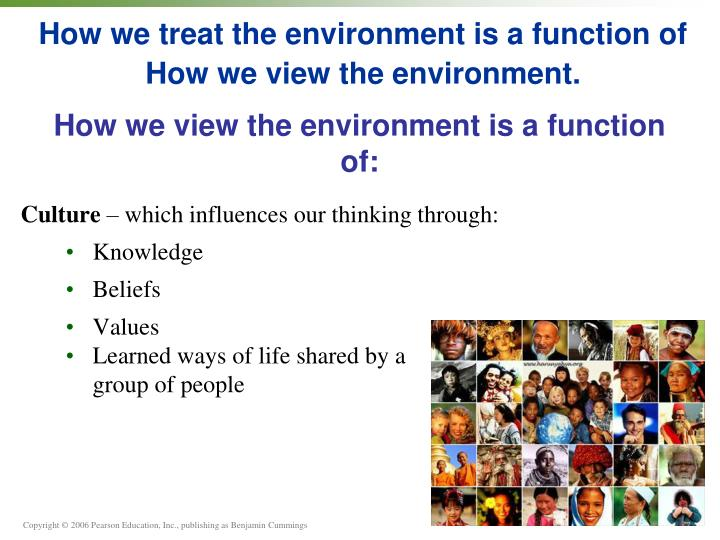 how we treat the environment is a function of how we view the environment