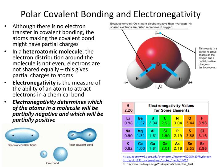 Polar Covalent Bonding and Electronegativity