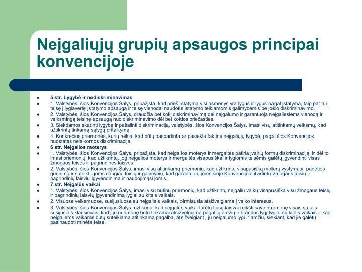 Neįgaliųjų grupių apsaugos principai konvencijoje