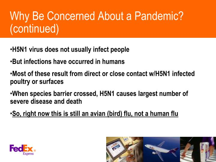 Why Be Concerned About a Pandemic? (continued)