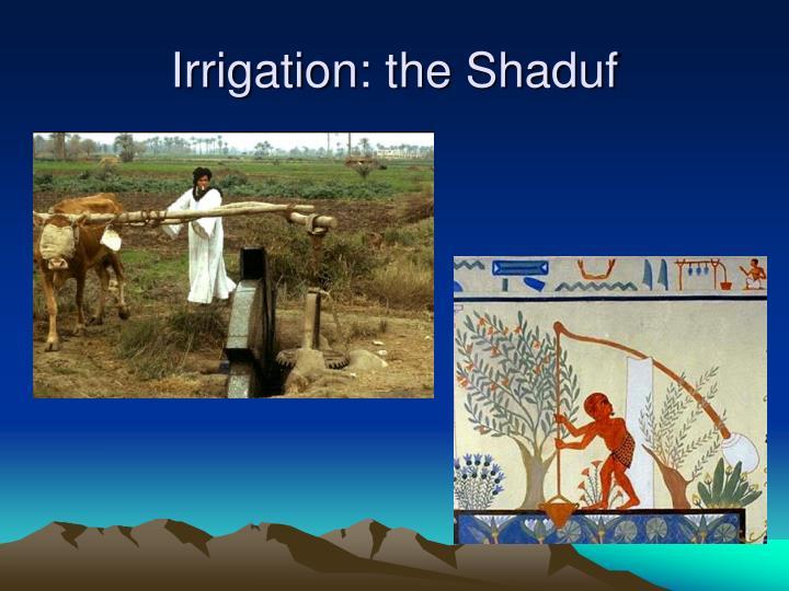 Irrigation: the Shaduf