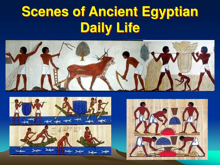 Scenes of Ancient Egyptian