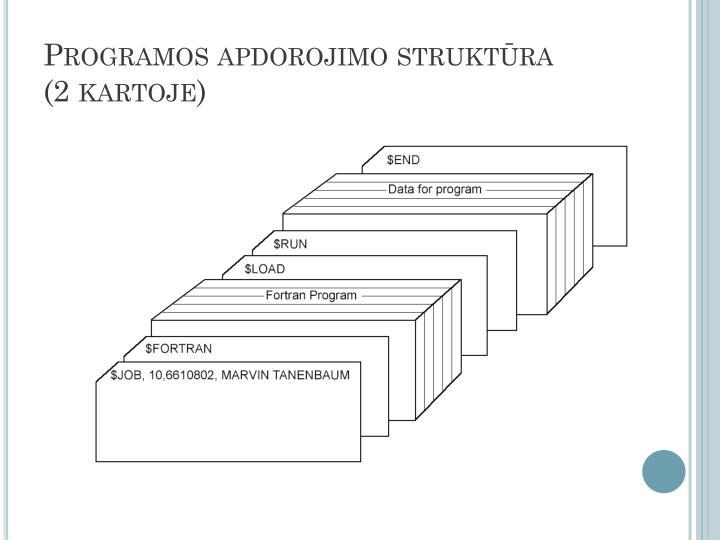 Programos apdorojimo struktūra
