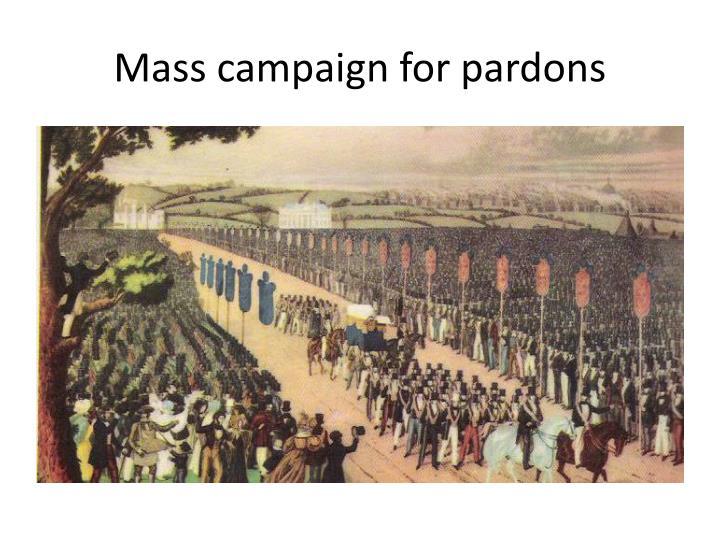 Mass campaign for pardons
