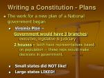 writing a constitution plans