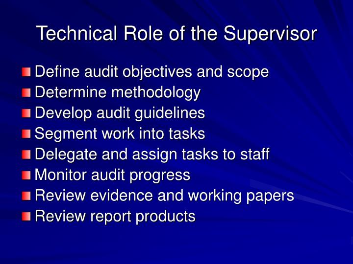Technical Role of the Supervisor