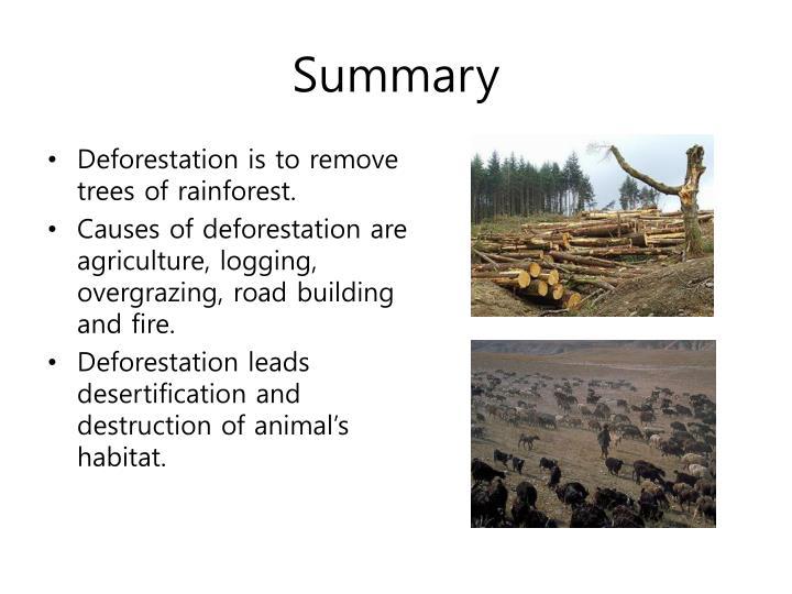 essay habitat destruction