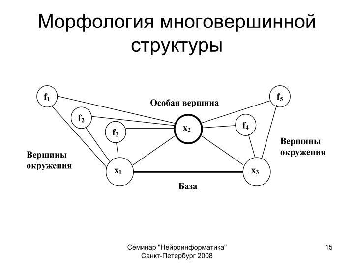 Морфология многовершинной структуры
