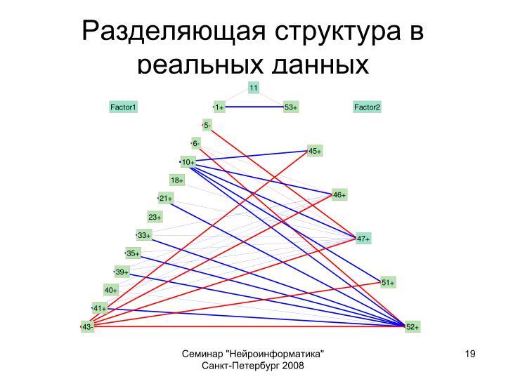 Разделяющая структура в реальных данных