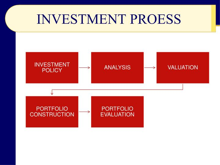 INVESTMENT PROESS