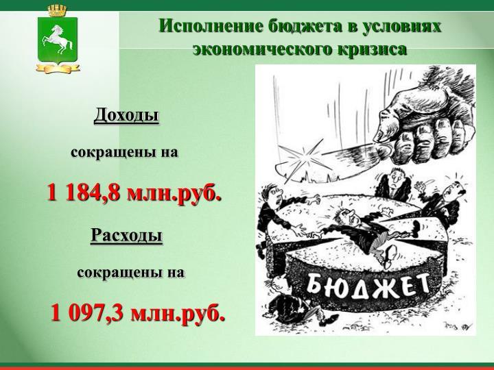 Исполнение бюджета в условиях экономического кризиса