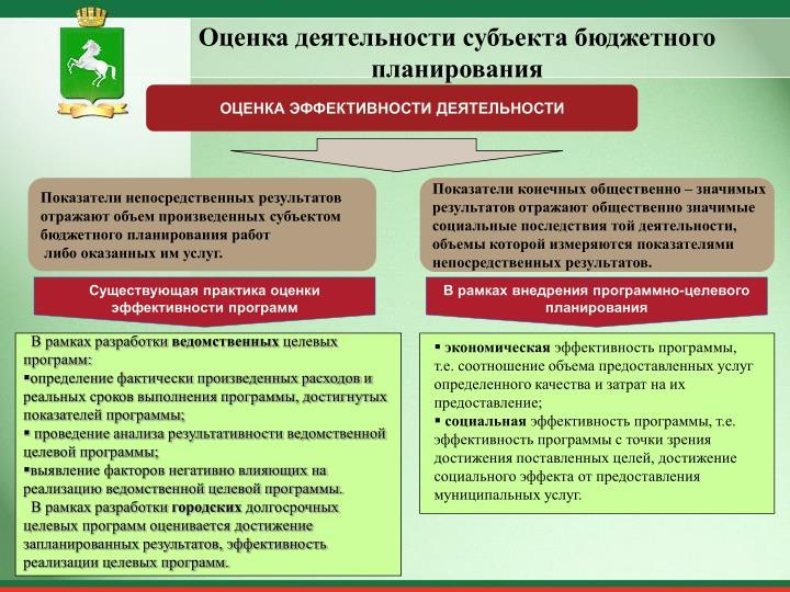 Оценка деятельности субъекта бюджетного планирования