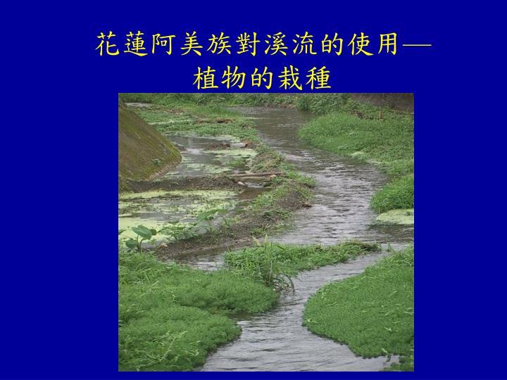 花蓮阿美族對溪流的使用