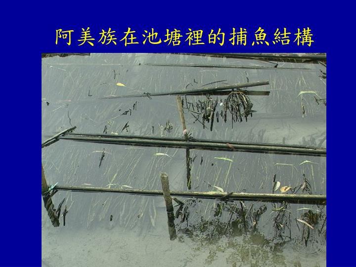 阿美族在池塘裡的捕魚結構